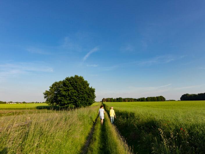 Beim Naturcoaching in Köln durch körperliche Bewegung Bewegung in die Gedanken bringen